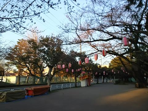 2015-03-26-yakuendai.jpg