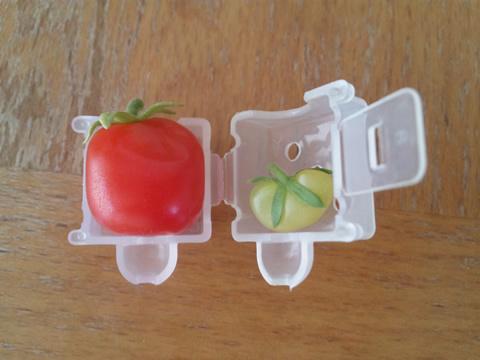 tomato4_2013-08-06.jpg